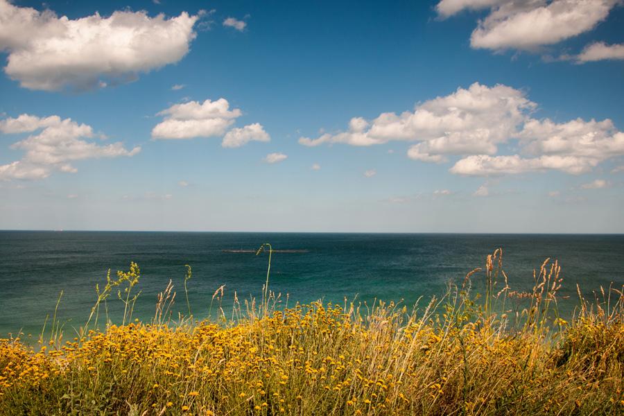 Bei Familien immer beliebt: Nordsee + Ostsee. Die Kinder können am Strand toben und im Wasser zu spielen, macht den Knirpsen sowieso Spaß. (#2)