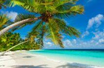 Reiseapotheke-Checkliste: Das muss alles dabei sein