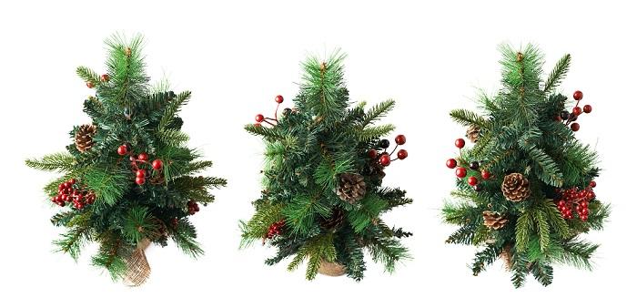 Wo immer man auch Weihnachten feiert, viele wünschen sich zumindest einen kleinen Weihnachtsbaum.