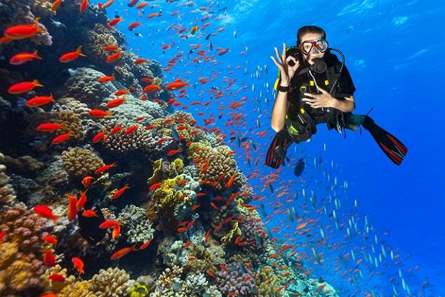 In Ägypten scheint auch für den Urlaub im Oktober noch die Sonne bei 30 Grad im Schatten. Wohin es zum Beispiel gehen könnte, ist Sharm el Sheikh, ein paradiesischer Ort am Roten Meer. (#03)