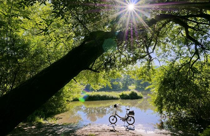 Die Landschaft von Unterfranken zieht viele Naturfreunde an, die diese Gegend zu Fuß oder mit dem Fahrrad erkunden möchten. Für die Radfahrer sind natürlich vor allem die Radwege in Unterfranken interessant. (#02)