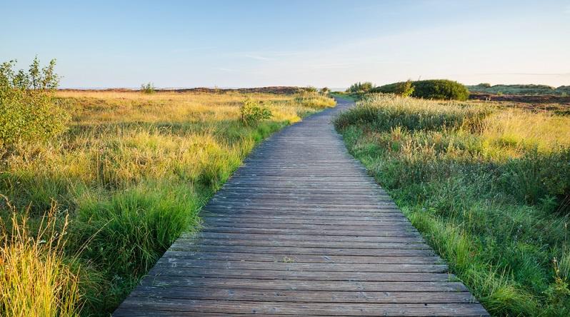 Die Verantwortlichen der Insel sind sich dem auch bewusst und betreiben neben dem Küstenschutz, welcher der stetigen Erosion des Küstensaums entgegen wirken soll, auch sehr aktiv Naturschutz. So sind viele Flächen auf der Insel als Naturschutzgebiet ausgewiesen. (#03)