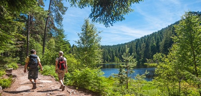Schönste Wanderwege Deutschlands: Auf diesen Routen lädt die Natur ein