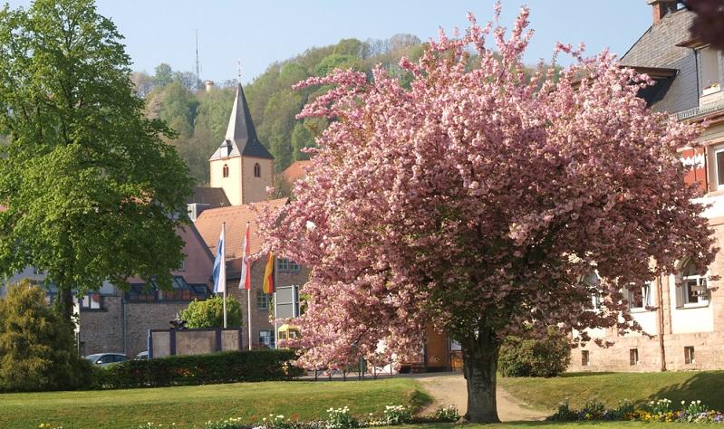 """Ein Besuch des Kurparks Bad Orb gehört unbedingt auf die Liste der Aktivitäten, die bei einem Besuch der Sehenswürdigkeiten von Hessen """"abzuarbeiten"""" sind."""