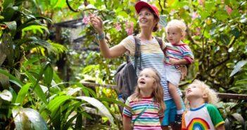 Südostasien mit Kindern reisen: Tipps und Wissenswertes