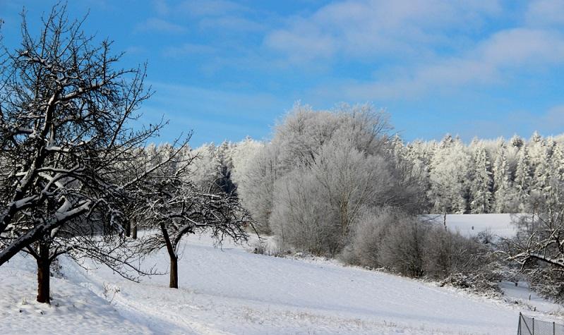 Im Winter spielt in den letzten Jahren der Schneemangel leider immer öfter in die Planungen der Tourismusbranche hinein, aber in schneereichen Wintern besteht in den umliegenden Mittelgebirgen wie Spessart und Rhön, die von Würzburg aus sehr gut zu erreichen sind, durchaus die Möglichkeit, gut zu Rodeln und Ski zu fahren.