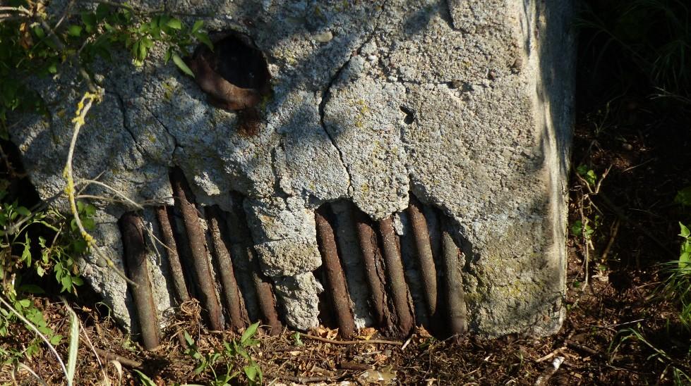 Kein Sachsenbunker steht in Mirow. Dafür aber eine Reihe von interessanten Bauwerken: die weißen Häuser. Das Bild zeigt Überreste eines Bunkers, genauer die Stahlbewehrung seiner Wand, der in der Nähe von Mirow in einem Waldgebiet liegt. (#1)