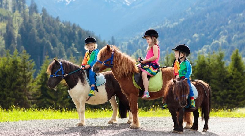 Tiere streicheln, Pony reiten, Traktor fahren und einfach draußen sein, das sind die Freizeitangebote auf dem Hof.