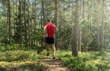 Trailrunning-Strecken: die Top-Trails in Bayern ( Foto: Shutterstock- DZiegler )