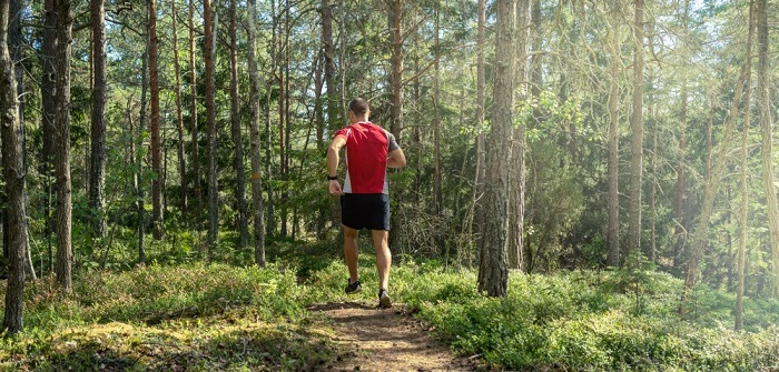 Trailrunning-Strecken: die Top-Trails in Bayern ( Foto: Shutterstock- DZiegler )